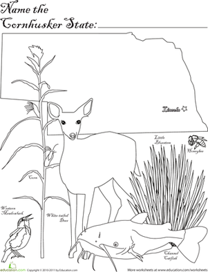First Grade Coloring Worksheets: Cornhusker State