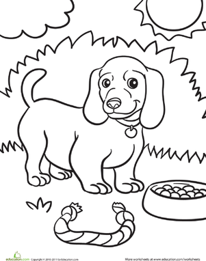 Kindergarten Coloring Worksheets: Weiner Dog Puppy Coloring Page