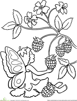 Color the Berry-Picking Fairy