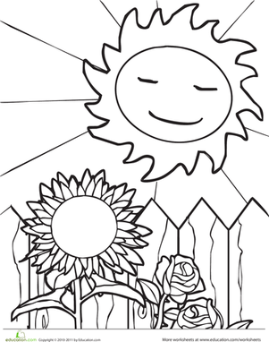 Kindergarten Seasons Worksheets: Sun and Sunflower
