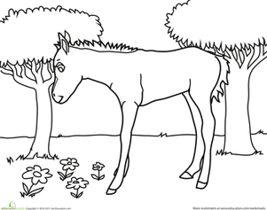 Kindergarten Coloring Worksheets: Horse Picture to Color