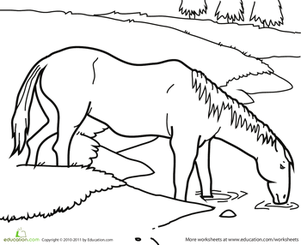 Kindergarten Coloring Worksheets: Color the Horse by the Pond