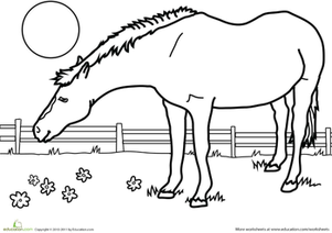Kindergarten Coloring Worksheets: Color the Horse