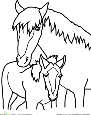 Preschool Coloring Worksheets: Baby Horse Coloring Page