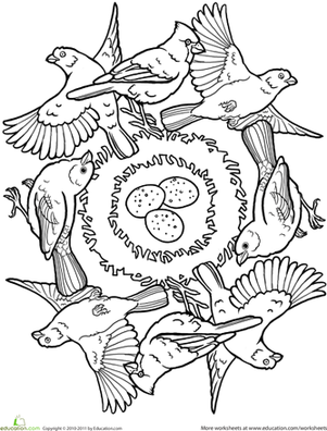 First Grade Coloring Worksheets: Bird Mandala