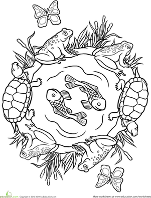 Second Grade Coloring Worksheets: Color a Mandala: Pond Life