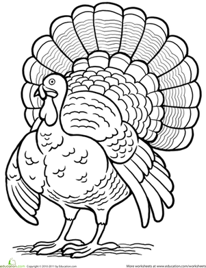 First Grade Holidays & Seasons Worksheets: Turkey Coloring Page