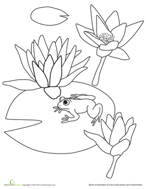 Kindergarten Coloring Worksheets: Color the Water Lilies
