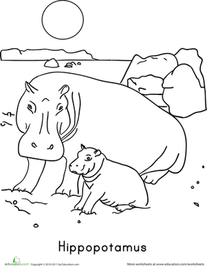 Preschool Coloring Worksheets: Color the Hippopotamus