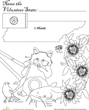 First Grade Coloring Worksheets: Volunteer State