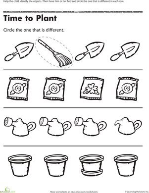 Preschool Math: Find the One That\'s Different | Worksheet ...