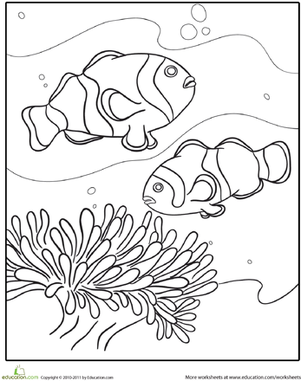 Kindergarten Coloring Worksheets: Swimming Fish Coloring Page
