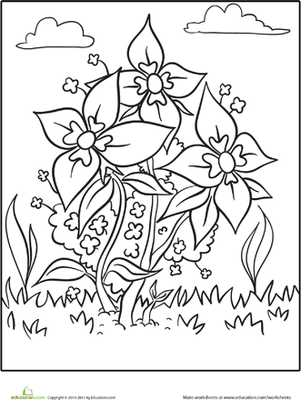 Blooming Flowers Coloring Page