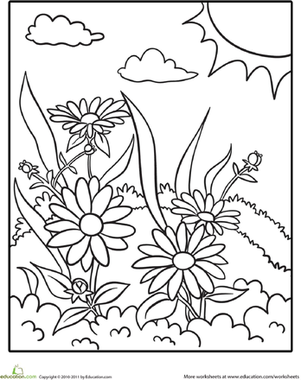 daisy coloring page. Black Bedroom Furniture Sets. Home Design Ideas