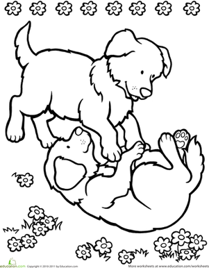 Preschool Coloring Worksheets: Playing Puppies Coloring Page