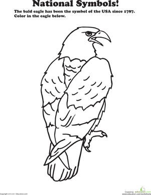 Preschool Coloring Worksheets: USA National Animal