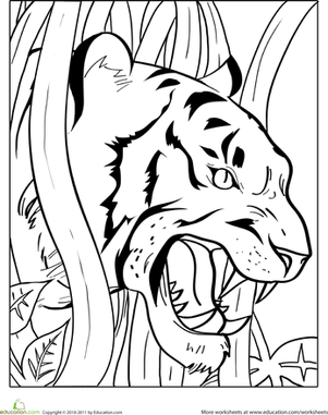 Kindergarten Coloring Worksheets: Growling Tiger Coloring Page