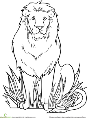 Kindergarten Coloring Worksheets: Lion Coloring Page