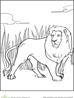 lions together with  besides  further 2220431be468a898d942548df10642ec furthermore  in addition  additionally  together with 76crEkL in addition lion cl 03 moreover male african lion coloring page as well 4lomao9. on animals coloring pages african lion