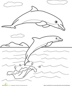 Color the Dolphin Pals Worksheet