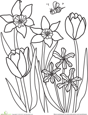 Kindergarten Holidays & Seasons Worksheets: Color the Spring Flowers
