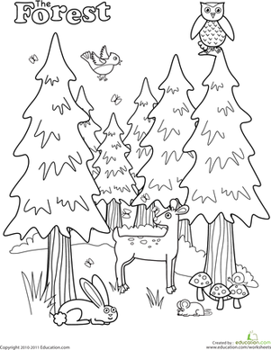 Preschool Coloring Worksheets: Forest Coloring Page