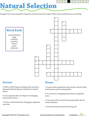 Third Grade Science Worksheets: Life Science Crossword: Natural Selection