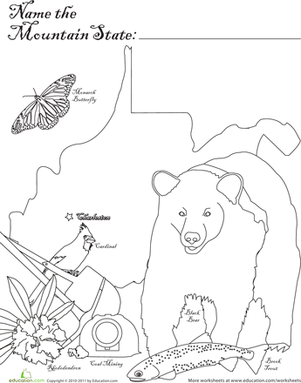 First Grade Social Studies Worksheets: Mountain State