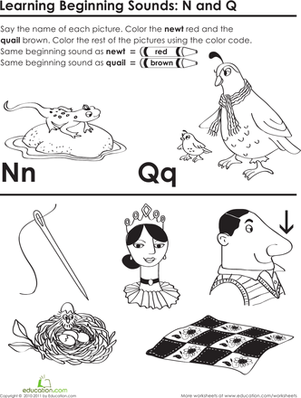 Beginning Sounds: N and Q