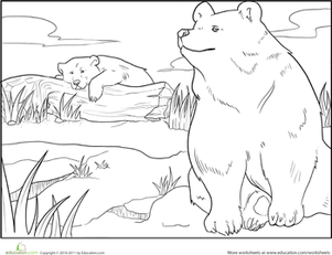 First Grade Coloring Worksheets: Color the Brown Bears