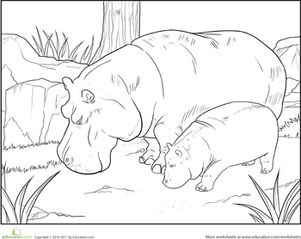 First Grade Coloring Worksheets: Color the Grazing Hippopotamuses