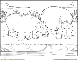 First Grade Coloring Worksheets: Hippo Coloring Page