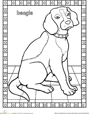 First Grade Coloring Worksheets: Color a Beagle!