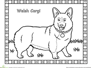 First Grade Coloring Worksheets: Corgi Coloring Page