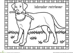 First Grade Coloring Worksheets: Labrador Coloring Page