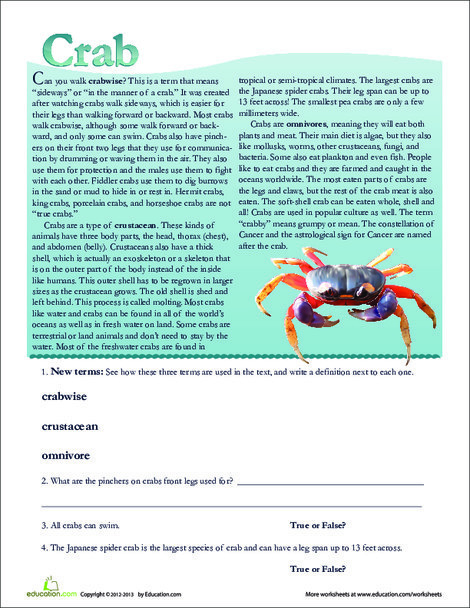 Second Grade Reading & Writing Worksheets: Crab Facts