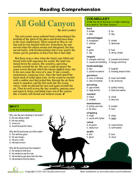 Fifth Grade Reading & Writing Worksheets: Reading Comprehension: All Gold Canyon
