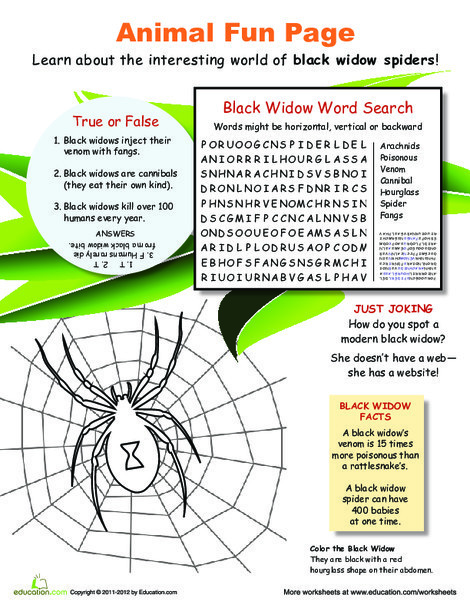 Fourth Grade Science Worksheets: All About Black Widows!