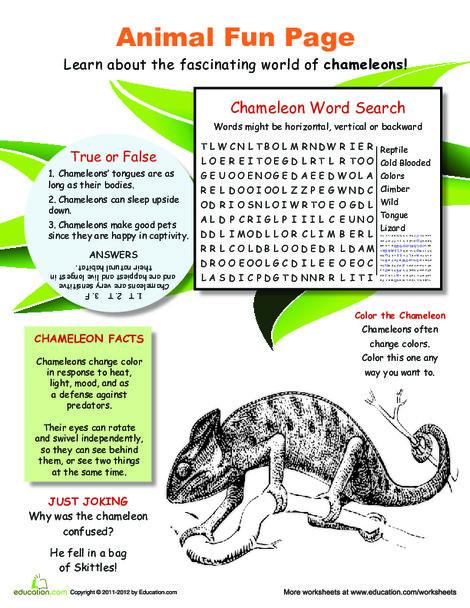 Fourth Grade Science Worksheets: Color Changing Chameleons!