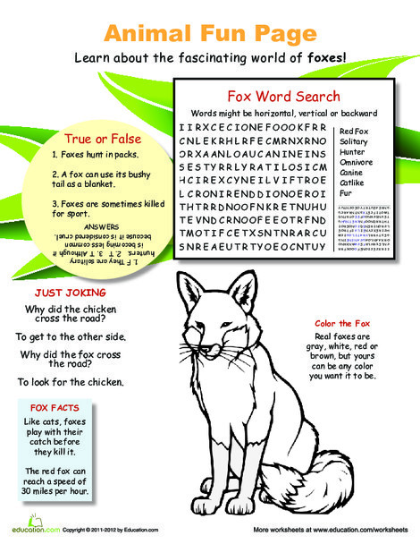 Fourth Grade Science Worksheets: Fun with Fantastic Foxes