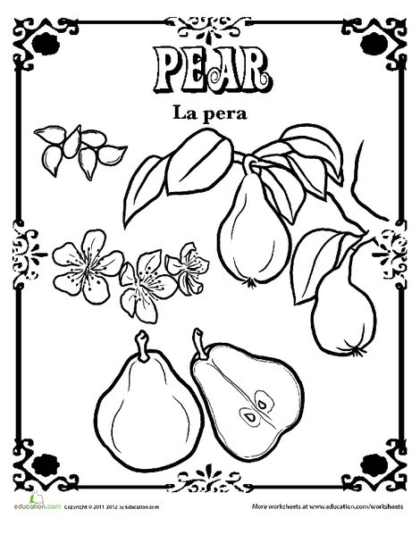 Kindergarten Reading & Writing Worksheets: Pear in Spanish