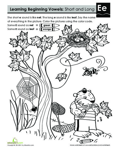 First Grade Reading & Writing Worksheets: Learning Beginning Vowels: E