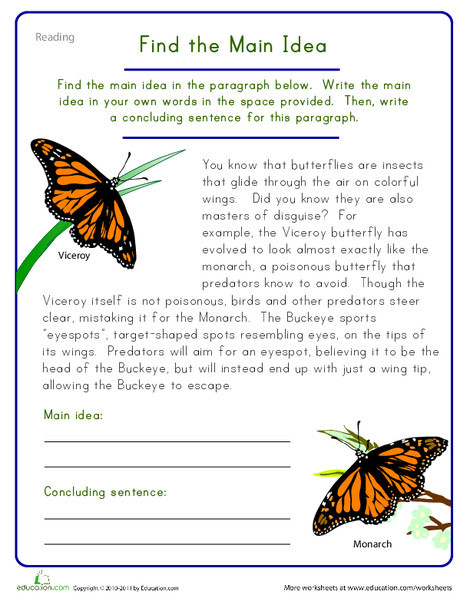 Fifth Grade Reading & Writing Worksheets: Find the Main Idea: Viceroy Butterfly
