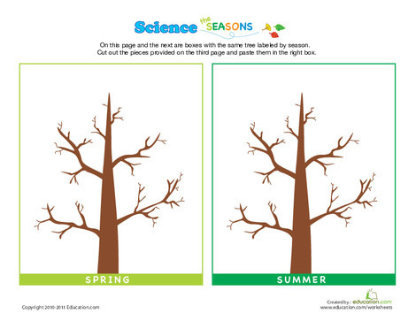 Preschool Science Worksheets: Science of the Seasons: How Do Trees Change?