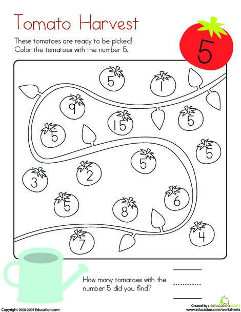 Kindergarten Math Worksheets: Coloring 5: Tomato Harvest