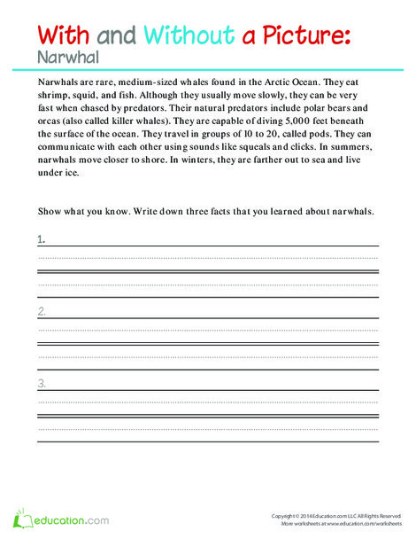 Second Grade Science Worksheets: With and Without a Picture: Narwhal