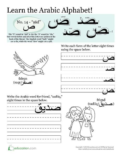 Third Grade Foreign language Worksheets: Arabic Alphabet: Ṣād