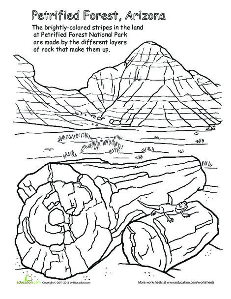 First Grade Social studies Worksheets: National Parks: Petrified Forest