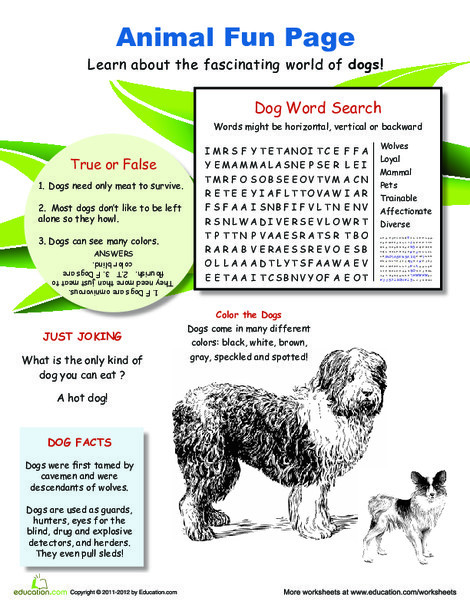 Fourth Grade Science Worksheets: All About Dogs