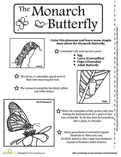 First Grade Coloring Worksheets: Butterfly Activity Placemat
